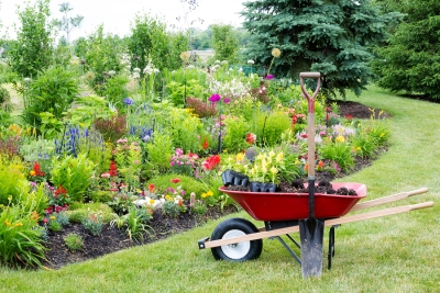 From Transporting Plants And Soil To Moving Around Equipment A Heavy Duty Wheelbarrow Is Among The Most Commonly Used Tools For Landscape Design