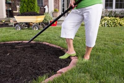 Summer Gardening Tips by Bellantoni Landscape