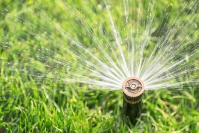 Benefits of Irrigation System by Bellantoni Landscape