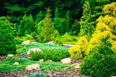 Drainage Solutions for your Landscape