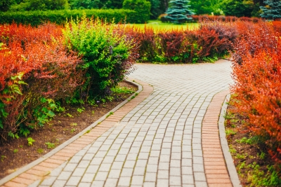 Preparing Your Landscape for Summer in Westchester County, NY