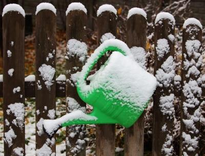 Winter Garden Maintenance by Bellantoni Landscape