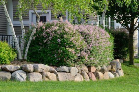 Adding Landscaping Rocks to Your Landscape Design