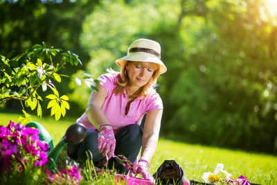 Caring for Your Garden Design in Westchester County
