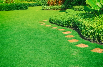 Green Landscaping in Westchester County, NY