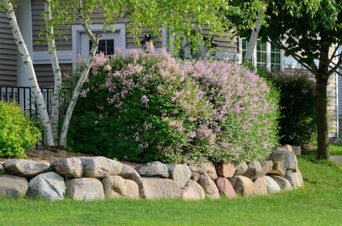 Landscaping Rocks in Westchester County, NY
