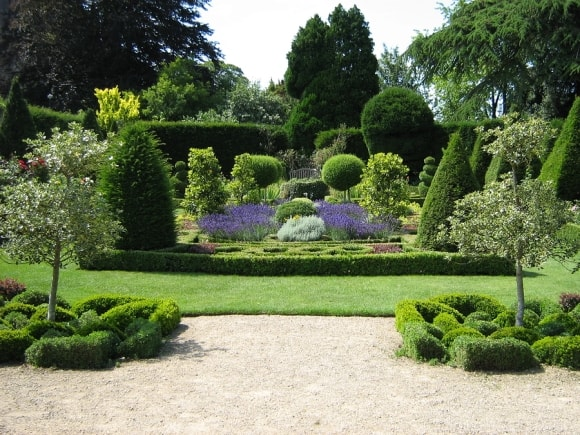 Choosing The Right Shrubs For Your Garden